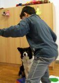 kutyaterapia4